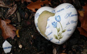 heart-480367_960_720