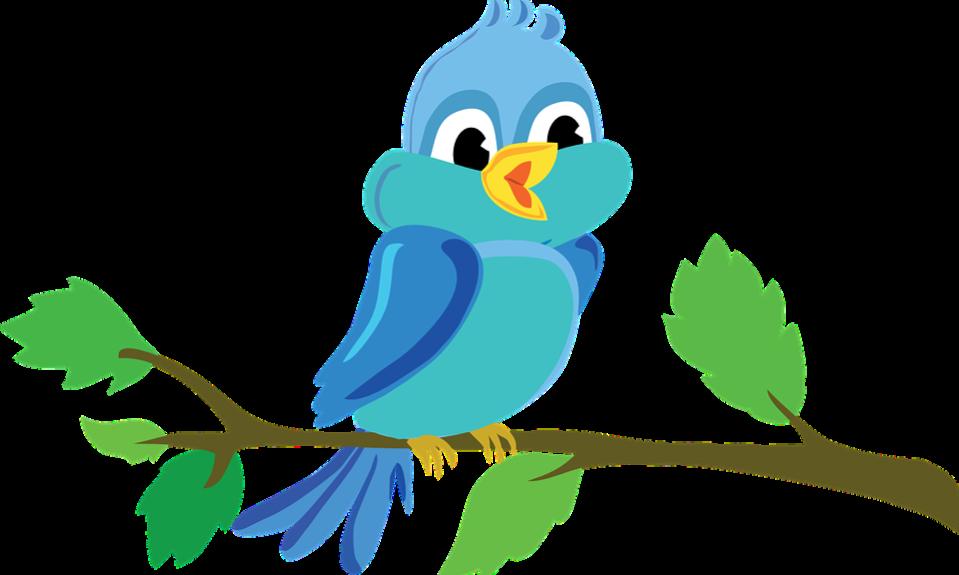 bird-982861_960_720