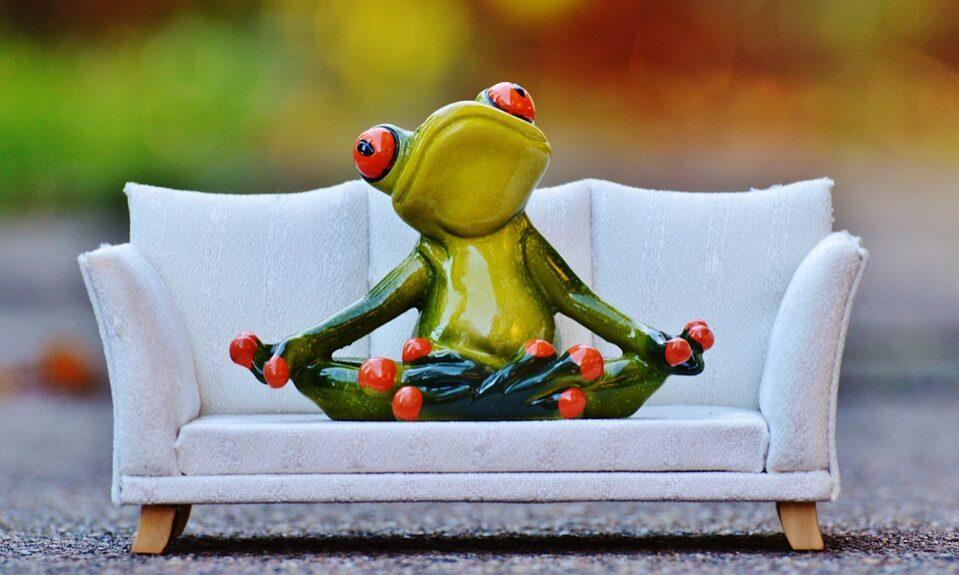 frog-1079973_960_720