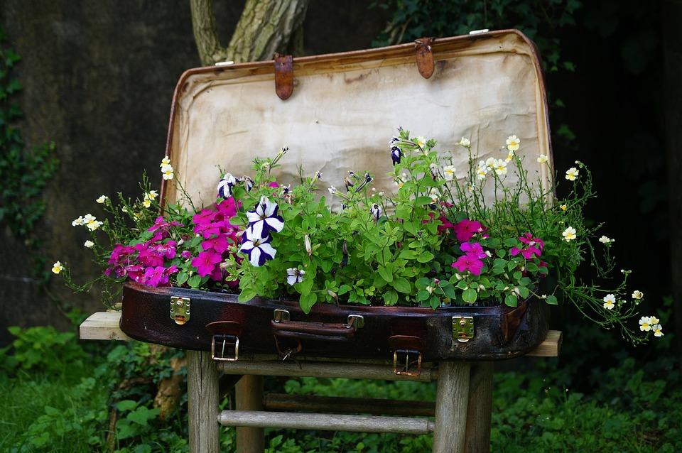 luggage-1562932_960_720